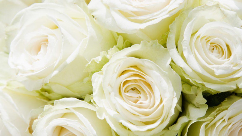 איך מעצבים זר פרחים לראש?